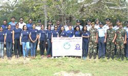 Tree Planting and Environmental Cleaning Project